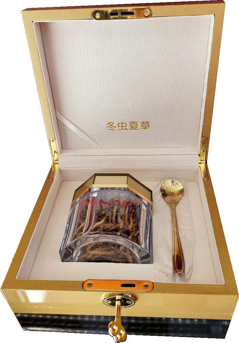 Nấm Đông trùng hạ thảo Bhutan hạng A hộp 30gr